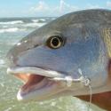 non-fisherman-participant-1366991290-png